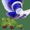 l'eau florale organ